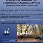 I Colori d'Autunno sul Montello